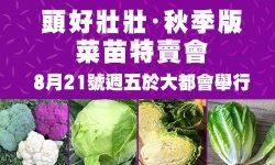 秋季菜苗特賣 | Metro Square