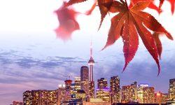 MSQ Canada 151